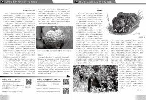 PopofNews023Web-4
