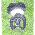 オスゴリラの休息 #4